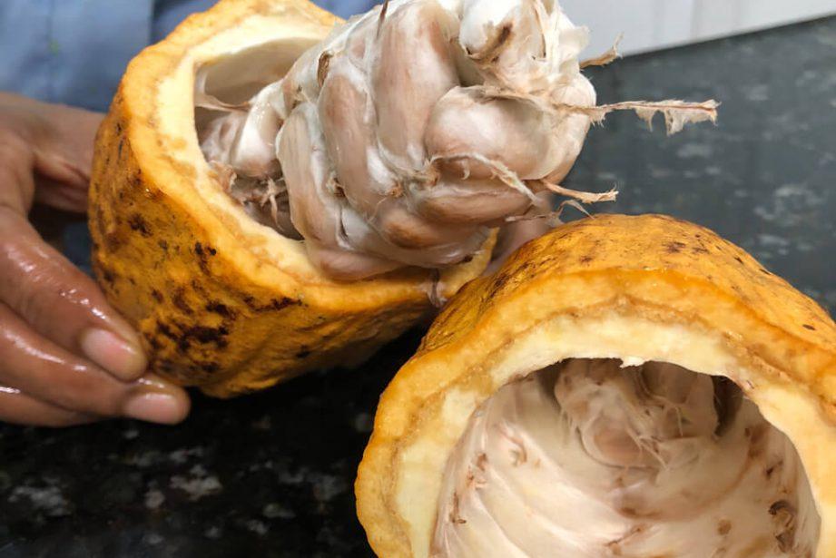 Kakao Arriba Nacional